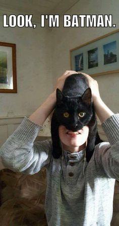 Look I'm Batman