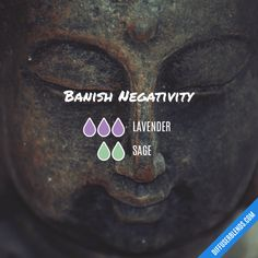 Banish Negativity - Essential Oil Diffuser Blend