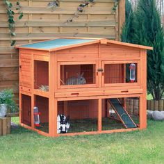 The Natura Extra Large two storey Rabbit Hutch is a high quality hutch perfect for a pair of rabbits when used with a large run for daily exercise. Description from netpetshop.co.uk. I searched for this on bing.com/images