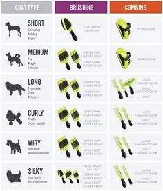 Dog grooming shears also differ with respect to the breed. There are thinning shears for hairier or long-haired breeds which are well suited for dense. Dog Grooming Styles, Dog Grooming Shop, Dog Grooming Salons, Dog Grooming Business, Dog Grooming Supplies, Poodle Grooming, Pet Shop, New Puppy Checklist, Puppy Training Schedule