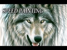 Drawing A Wolf   Speed Painting with acrylic paint and markers