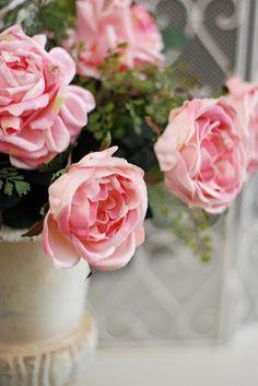 101 best me likes essence of me images planting flowers rh pinterest com