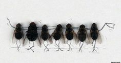 Humoristic Doodles of Flies by Magnus Muhr | Abduzeedo Design Inspiration & Tutorials A little sick...and funny at the same time!
