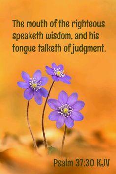 Psalm 37:30 KJV