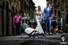 Wedding couple on there way to there ceremony. Enoying the streets of San Gimignano.