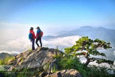 friend  by isola7512  A sea of clouds Fog Korea Mountain chu byung ook friend Light Morning Pine cloud friend ... isola751