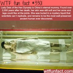 Lady Dais of the Han Dynasty is China's eternal mummy and the remains are the most well-preserved ancient human ever discovered.