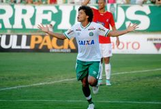 BotafogoDePrimeira: Próximo candidato à 10, Camilo estreia contra adve...