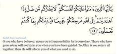 Surat Al maidah ( the table) verse 105