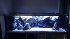 Ona of our A models. #aquadecor #freshwateraquarium #saltwatertank #malawicichlids #malawi #mbunacichlid #3drocks #3dstone #3dbackgrounds #aquarium #aquariums #aquariumfish #aquariumbackground #custombackgrounds #customaquariums #cichlids #bigaquarium #bigfishtank #bigfishtanks #frontosa #tropheuscichlid #pseudotropheus #labeotropheus #labidochromis #aquariumfishes #decoration #interiordecoration