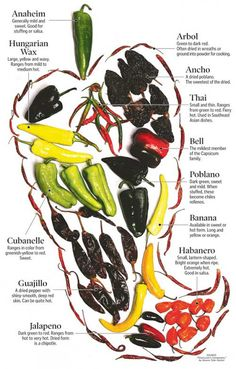 Carole's Chatter: Types of chilies