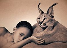 Interior Furniture: Gregory Colbert's Ashes & Snow Experience
