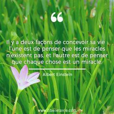 #citation Albert Einstein. Développement personnel et bien-être au naturel sur www.liberetavie.com