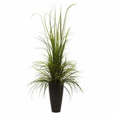 """64"""" River Grass w/Planter (Indoor/Outdoor)"""