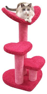 """Sweetheart Cat Window Perch  At 36"""" tall, this lovely cat window perch has a curved heart-shaped bed and 2 heart-shaped steps. You can also use the perch as a kitty staircase, to provide an easy way for your cats to reach their favorite high-up places.  - Dimensions 36""""Hx24""""Wx20""""D  - Weight 28lbs  - Material Plywood, Solid Pine (Posts), 100% Nylon Carpet"""