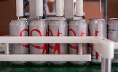 Moo Brew brewery tour – Stuff to do | Mona