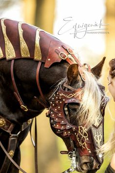 """If by my life or death I can protect you, I will. Photo… ""If by my life or death I can protect you, I will. - Art Of Equitation Horse Armor, Horse Bridle, Horse Gear, All The Pretty Horses, Beautiful Horses, Animals Beautiful, Zebras, Animals And Pets, Cute Animals"
