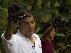 Ecuador's President Rafael Correa raises an oil-coated hand to show media, near petroleum debris, said to be caused by Chevron-Texaco, September 17, 2013.