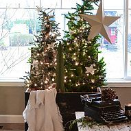 A Christmas tree forest in a crate I have a 'habit'. Every Christmas I push myself to come up with something unique to do for a Christmas tree. This y...