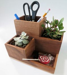 This DIY Desk Organizer and Succulent Planter is the best! Organize your office supplies AND add succulents to your desk!