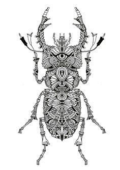 Lucane - artwok by Bleeken #doodle #insect