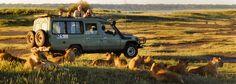 Tanzania Photo Safari, East African Photo Safari | International Expeditions
