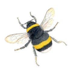 Rie Designed Sketch A Day, Doodle Sketch, Bees, Sketches, Artwork, Artist, Inspiration, Design, Wood Bees