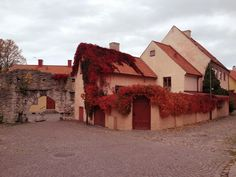 Fall colors in Visby, Gotland