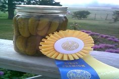 Blue Ribbon Dill Pickles A good friend gave me this recipe many years ago after I munched down nearly a quart while visiting! I threw out ALL my other dill pickle recipes because THIS ONE is the best. Making Dill Pickles, Best Pickles, Canning Pickles, Homemade Pickles, Blue Ribbon Dill Pickle Recipe, Baby Dill Pickle Recipe, Home Canning, Canning Recipes, Dill Recipes