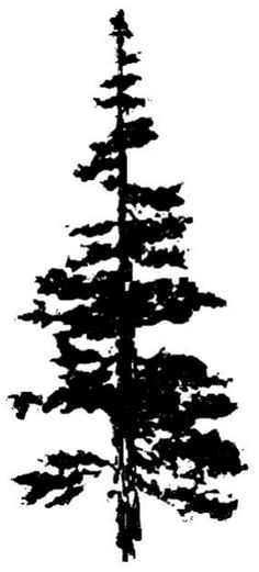 Art Impressions Wilderness Series Cling Rubber Stamp-Mountain Fir