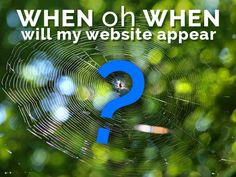 How Long Does it Take a New Website to Rank in Google Search?