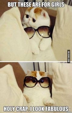 When you try a new pair of glasses and you look in the mirror and be like