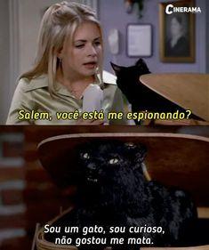 Salem Sabrina, Shawn Mendes Memes, Sabrina Spellman, Memes Status, Icarly, Old Love, Disney Films, Disney Quotes, Series Movies