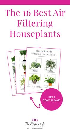 Did you know plants can actually make your home healthier? Get the free download: The 16 Best Air Filtering Houseplants!