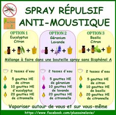1000 id es sur le th me spray anti moustique sur pinterest for Anti moustique naturel maison