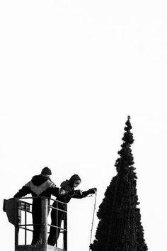 fot. Grzegorz Bukalski #christmastree