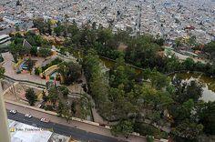 Nezahualcóyotl, Méx. 26 Julio 2013. El 08 de noviembre de 1995 el Gobierno del Estado de México transfiere al municipio la administración del Zoológico Parque del Pueblo de Nezahualcóyotl.