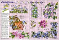 "Gallery.ru / Chispitas - Альбом ""Encyclopedie du point de croix 1998"" Le Point, Cross Stitch, Map, Russia, Flowers, Leaves, Punto Croce, Crossstitch, Cards"