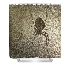 Golden cross spider Shower Curtain by Sverre Andreas Fekjan. This shower curtain is made from polyester fabric and includes 12 holes at the top of the curtain for simple hanging. The total dimensions of the shower curtain are wide x tall. Curtains For Sale, Shower Curtains, Spider, Simple, Fabric, Tejido, Spiders
