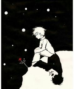 Little Prince...