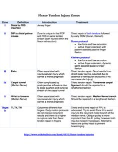 Flexor Tendon Injury Zones page 2