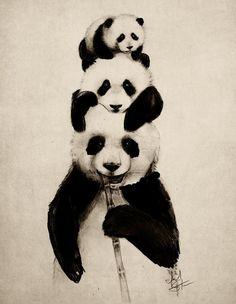 pandas #13