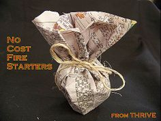 Fire starters - a good way to recycle old scentsy wax and dryer lint!