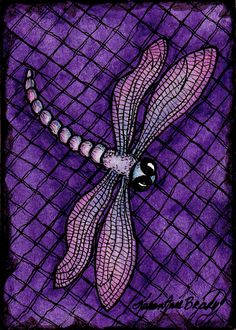 "ACEO Print ""Purple Dragonfly"" an Open Edition ACEO Art Print by Karen Anne Brady by IrelandBrady on Etsy https://www.etsy.com/listing/83299662/aceo-print-purple-dragonfly-an-open"