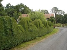 Hello - A Welcoming Hedge, Mavie Mill