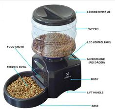automatic dog food dispenser