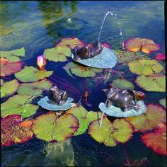 Lazy Frog Medium Fountain