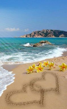 To my dear Joe,♡♡♡l miss you Joe, Love Doris. Beautiful Flowers Wallpapers, Beautiful Nature Wallpaper, Beautiful Gif, Beautiful Landscapes, Beautiful Soul Quotes, I Miss You Wallpaper, Beach Wallpaper, Wallpaper Backgrounds, I Love You Pictures