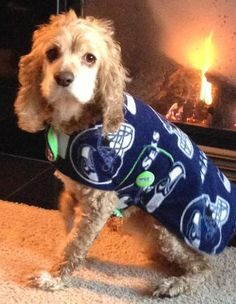 Seattle Seahawks Dog Coat Large by OliveandBasil on Etsy, $30.00