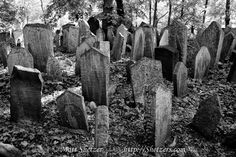 dilapidated-headstones-at-old-jewish-cemetery.jpg 1,200×800 pixels